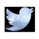 Twit-logo-80-px