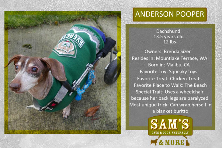 Anderson Pooper