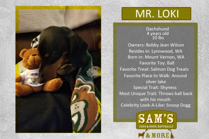 Mr. Loki