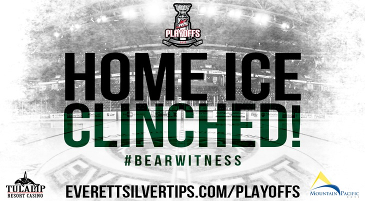 Website Banner Large Home Ice