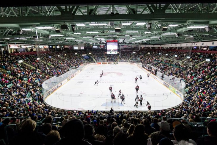 Cougars-Arena