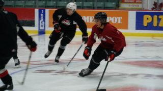 Viliam Kmec. Hockey hair