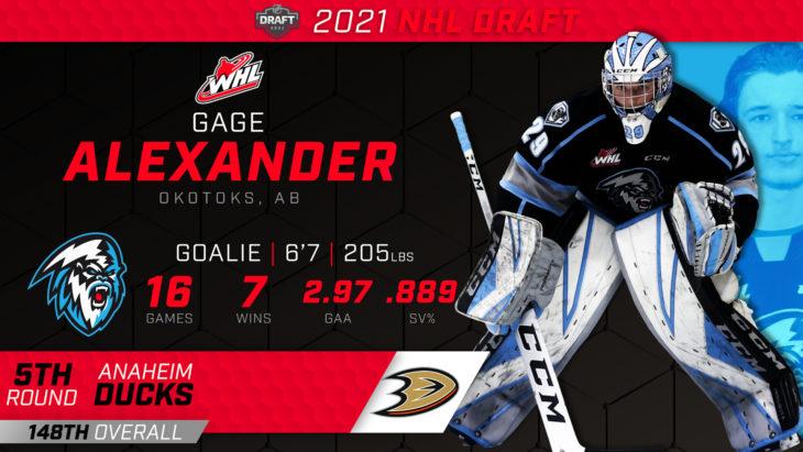 Alexander Draft THUMB